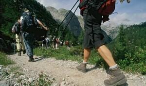 Die meisten Bergwanderer knicken um oder rutschen aus, hat der Alpenverein festgestellt. Foto: picture-alliance