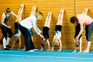 In Hilfestellung und Unterstützung ist der organisierte Sport geübt. Foto: LSB NRW