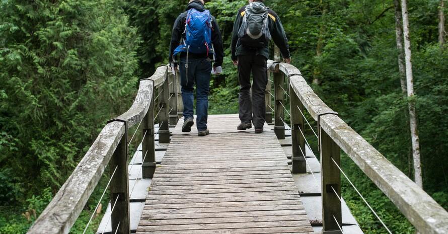 Wanderer tun etwas Gutes für ihre Gesundheit. Foto: picture-alliance