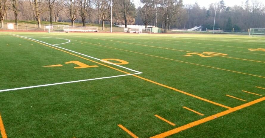 Kunststoffrasensysteme werden in verschiedenen Sportarten verwendet. Foto: BISp