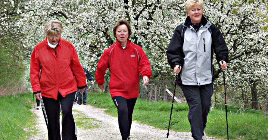 Jeder teilnehmende Verein soll am Frauensportaktionstag einen 3.000-Schritte-Spaziergang anbieten.