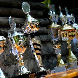 Titelbild für Auszeichnungen und Preise