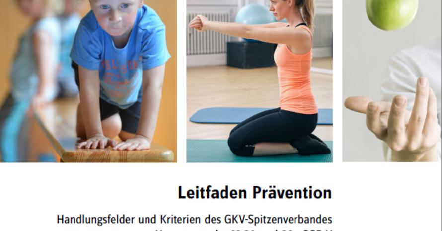 """Screenshot vom Titelbild des """"GKV Leitfaden Prävention"""""""
