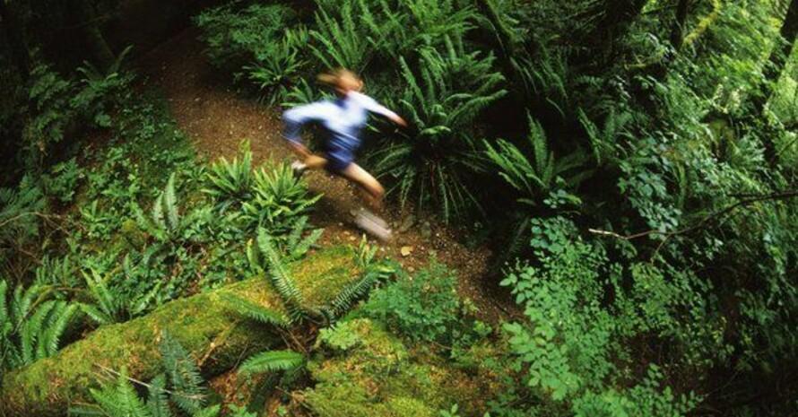 Bewegung in der Natur umgeben von biologischer Vielfalt. Foto: picture-alliance