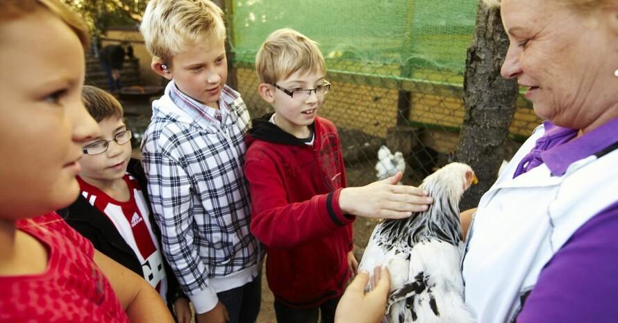 Schülerinnen und Schüler der drei Gewinnerklassen lernen spielerisch den Umgang mit Tieren und Landwirtschaft auf einem Freizeiterlebnishof für Kinder und Jugendliche im Prenzlauer Berg in Berlin. Foto: Lidl