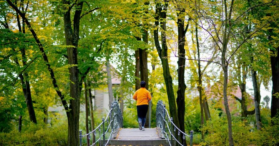 Wälder und Parks sind Räume für Sport und Bewegung. Foto: picture-alliance