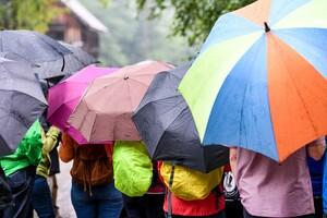 Eine Wandergruppe schützt sich mit bunten Schirmen vor dem Regen. Foto: picture-alliance