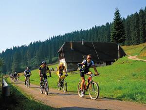 Auf dem Fahrrad die Natur genießen. Coypright: picture-alliance