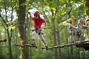 Kinder klettern im Hochseil-Kletterpark Duisburg. Foto: picture-alliance