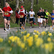 Läufer neben einer Blumenwiese Foto: picture-alliance