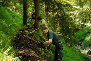Im Einsatz für den alpinen Schutzwald. Foto: DAV Arvid/Uhlig
