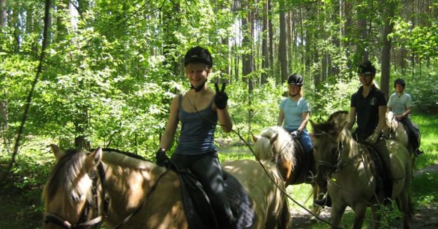 Gib es etwas Schöneres, als auf dem Rücken eines Pferdes die Vielfalt in der Natur zu entdecken? Foto: dsj