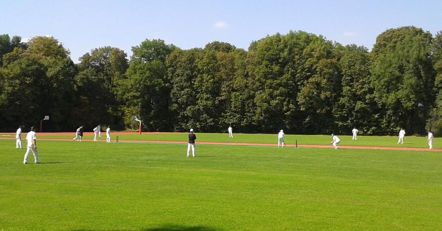 Cricketspieler auf einer Wiese