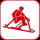 Ski Alpin-Monoski