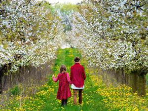 Ostern ist die Zeit für ausgedehnte Spaziergänge. Foto: picture-alliance