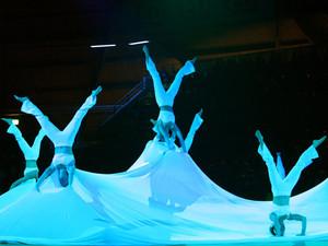 """""""Meet the Magic"""" heißt die DTB-Show für die Welt-Gymnaestrada in Lausanne. Foto: DTB"""
