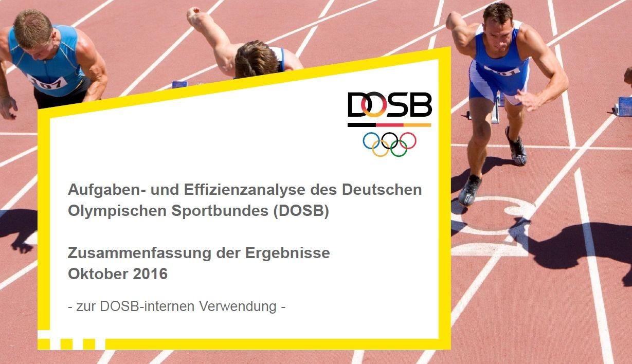 Aufgaben- und Effizienzanalyse des DOSB Ergebnisbericht