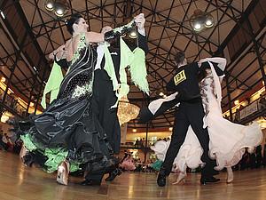 47 Einzelturniere werden in der Stuttgarter Liederhalle ausgetragen. Foto: picture-alliance