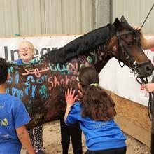 Drei Kinder bemalen ein Pferd mit ihren Händen.
