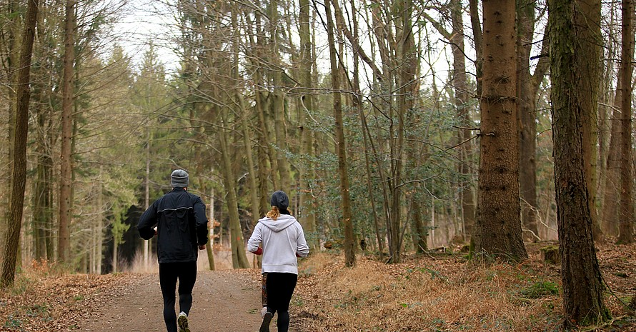 Für Sportreibende ist der Wald ein idealer Ort, um sich fit zu halten. Foto: picture-alliance