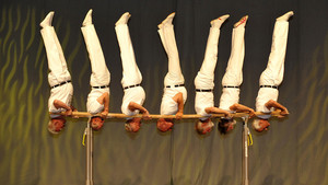 Die Turnbewegung begann vor mehr als 200 Jahren in Deutschland. Foto: picture-alliance