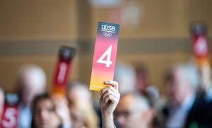 Abstimmung bei der DOSB-Mitgliederversammlung. Foto: picture-alliance