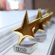 Die Sterne des Sports glänzen golden und sind die wichtigste Auszeichnung des Breitensports. Foto: DOSB/BVR