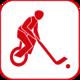Einradhockey