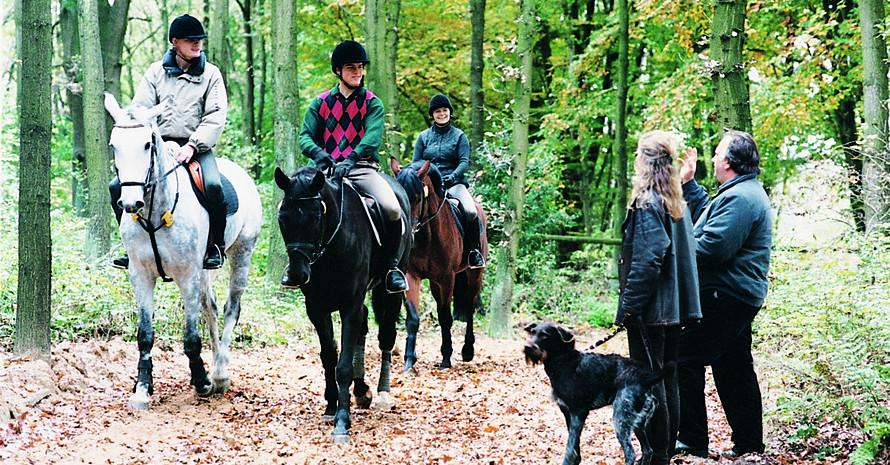 Für Wanderer und Reiter ist der Wald ein beliebtes Ausflugsziel. Foto: Deutsche Reiterliche Vereinigung