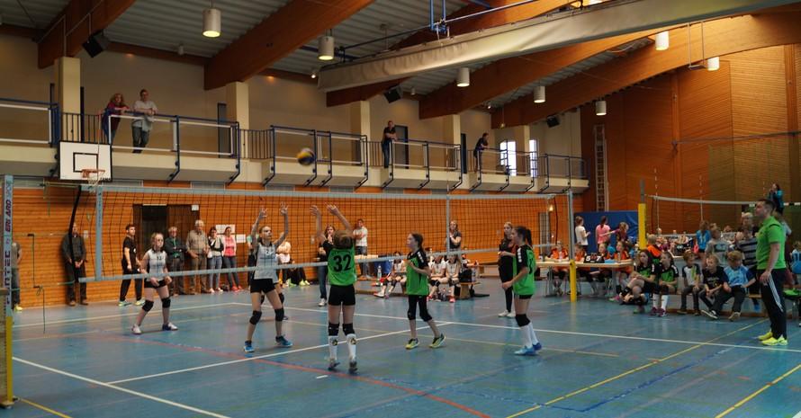 Volleyball im TV Wiesbach – Der duale Weg Foto: TV Wiesbach