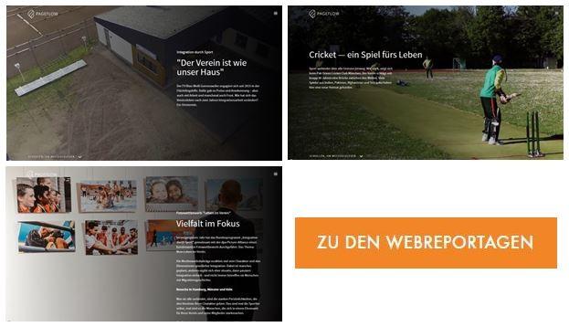 Webreportagen
