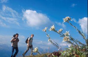 Wandern gehört zu den beliebesten Freizeitbeschäftigungen. Copyright: picture-alliance