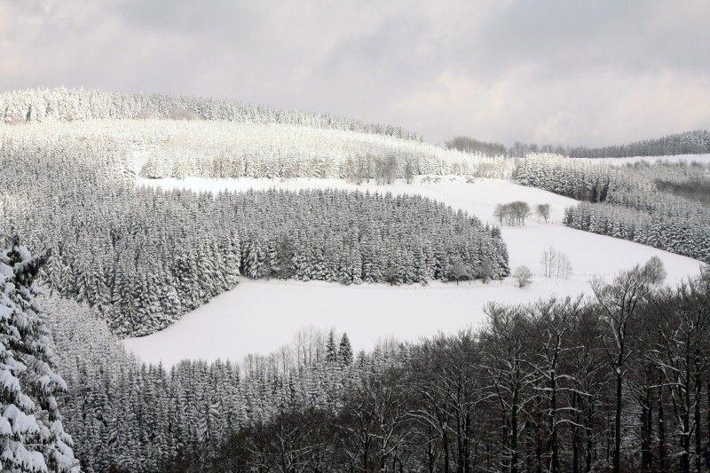 Schneelandschaft Copyright: Bilddatenbank LSB NRW / Foto: Peter Kallwitz